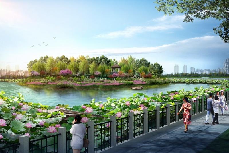 公园荷花池景观设计
